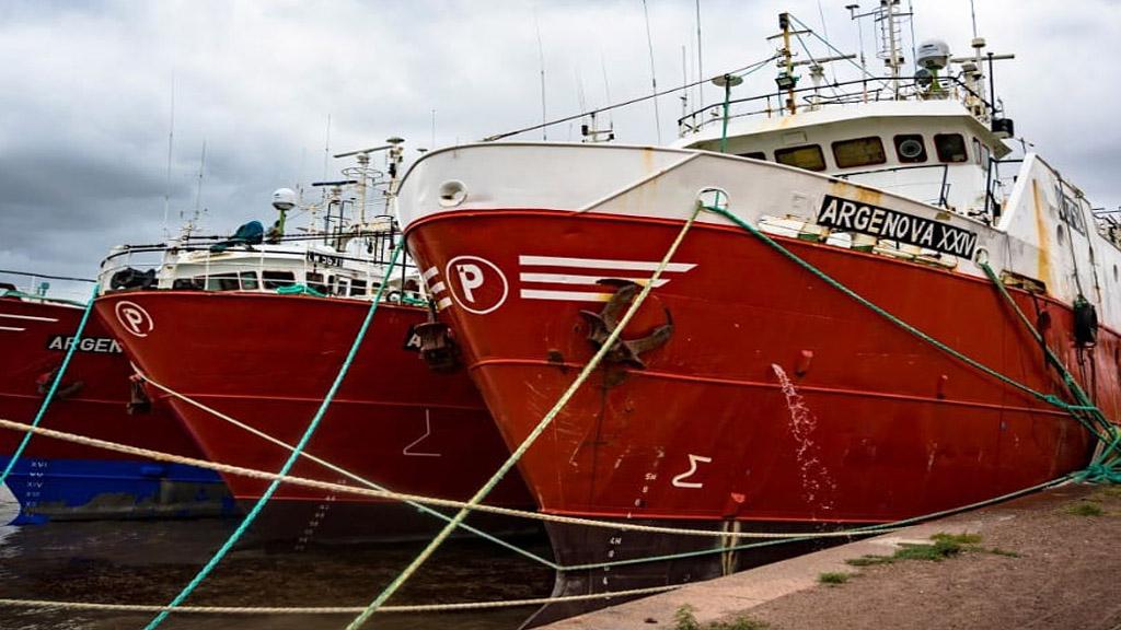 Muy buenos números para la actividad pesquera