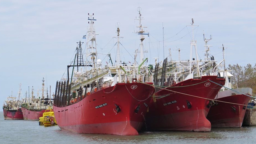 La pesca se transformó en uno de los sectores más dinámicos de la economía