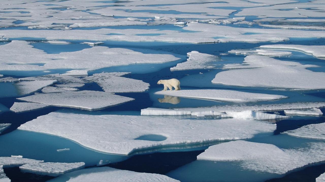 Según las últimas mediciones, los océanos están aumentando 4 milímetros cada año