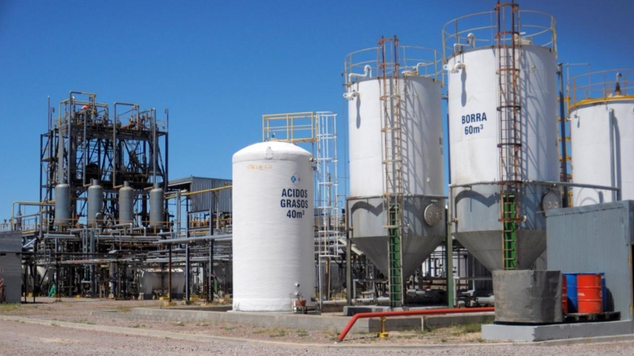Biocombustibles: sin intervención del Estado, el sector se dirige directo al colapso