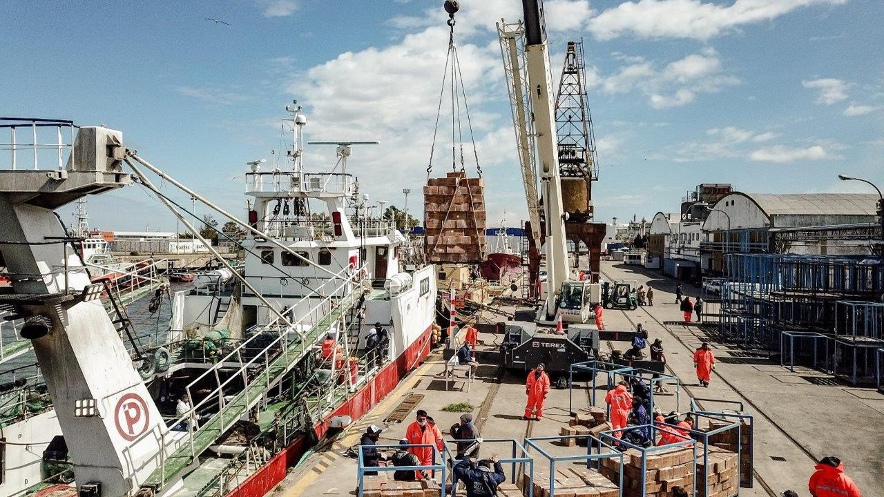 Optimismo en Bahía Blanca por la recuperación de la actividad pesquera en sus muelles