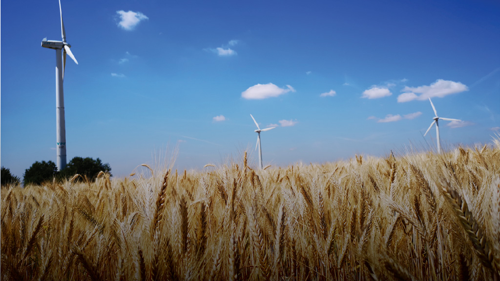 El 60% de la energía que consume Profertil en Bahía Blanca ya es de origen renovable