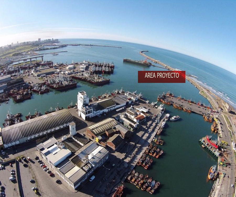 Mar del Plata: el gobierno nacional anunció la construcción de un espigón para pesqueros