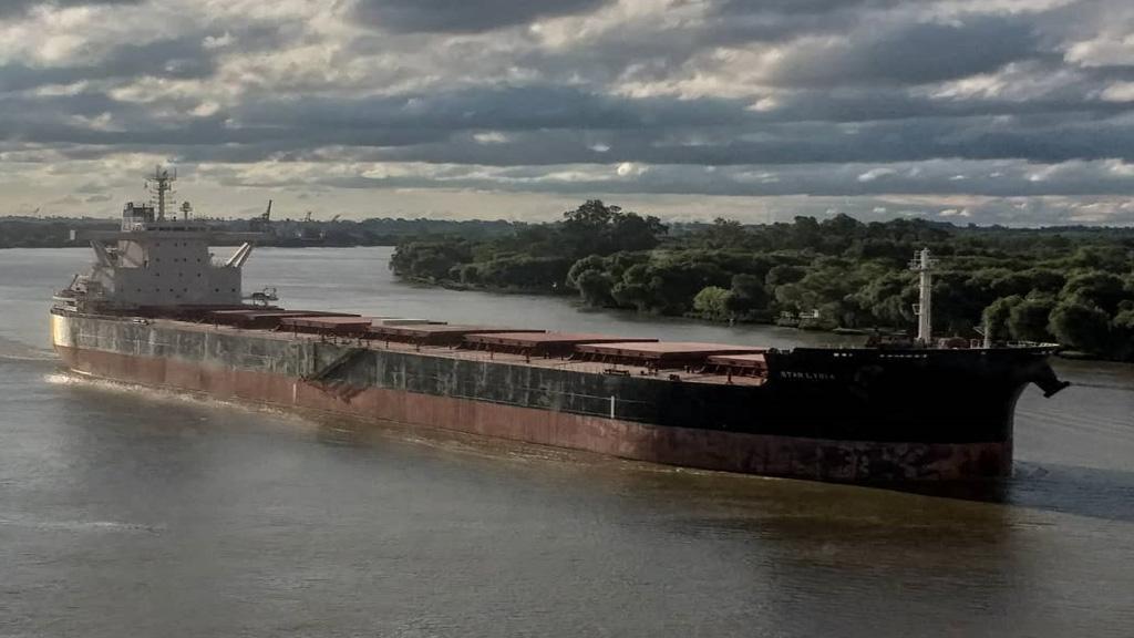 Pese a la pandemia, apenas cayeron un 6 por ciento los embarques argentinos de granos