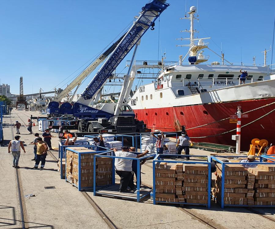 La pesca comienza a ser una opción de peso en el puerto de Bahía Blanca