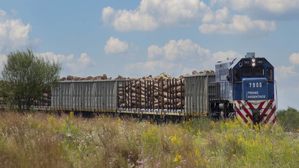 Trenes Argentinos Cargas aumentó un 19% las toneladas transportadas en el primer trimestre