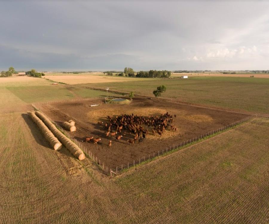 Profertil y la importancia de cuidar un recurso clave como el suelo