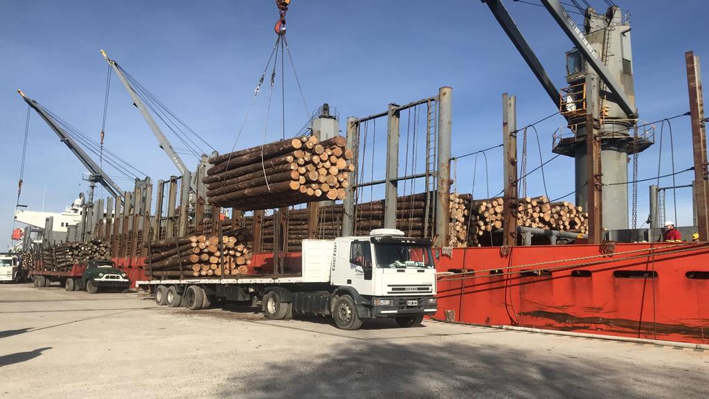 Ibicuy complementa a Concepción del Uruguay en una exportación de rollizos de pino